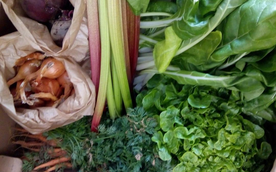 Choisissez Biovosges pour vos produits alimentaires bio à Mirecourt